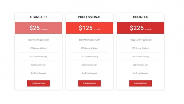 How to Create a Responsive Pricing Table?