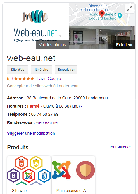 Google My Business fiche