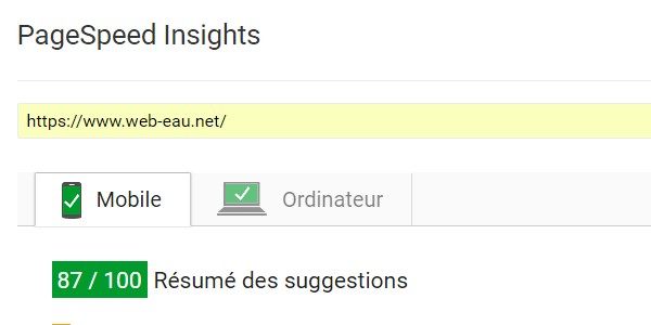 Résultats Google PageSpeed Insights